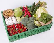Panier légumes hebdomadaire - 2 personnes
